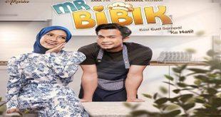 Mr Bibik